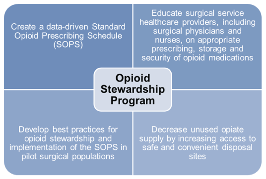 Opioid Stewardship Program Image